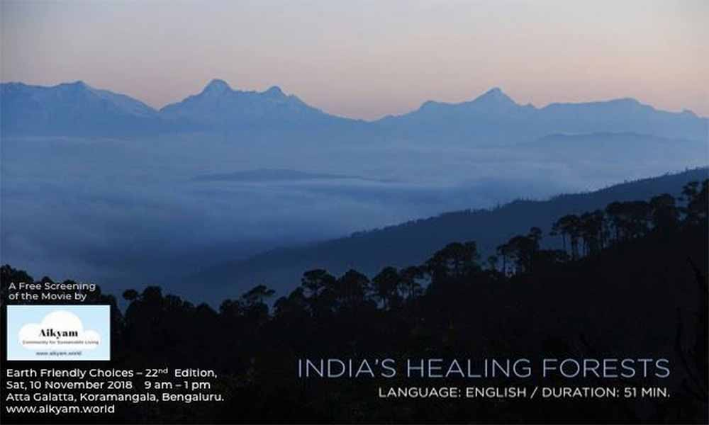 Healing Forests of India