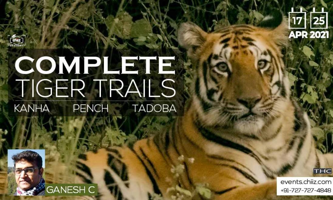 COMPLETE TIGER TRAILS