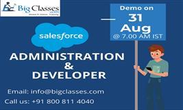 Salesforce Administration & Developer Demo on 31st Aug 7.00 AM (IST)