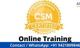 Certified Scrum Master Online Training