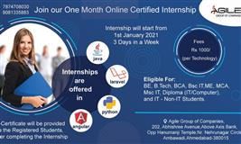 Are you looking for Certified Online Internship in IT Training Courses?