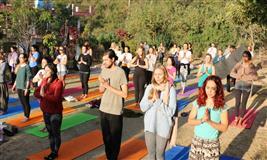 Rishikesh 200 Hour Yoga Teacher Training In India