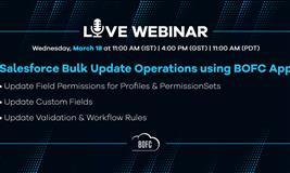 Salesforce Bulk Update Operations using BOFC App