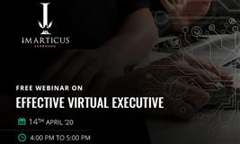 EFFECTIVE VIRTUAL EXECUTIVE