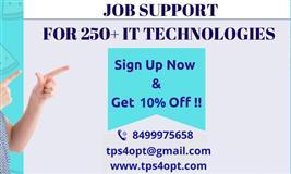 Job Support l TPS4OPT