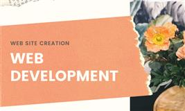 Best Web Development Company in Hyderabad