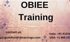 OBIEE 11G  ONLINE TRAINING ,  Business Intelligence Enterprise Edition 11g