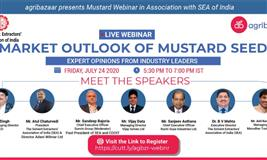 Market Outlook of Mustard Seed