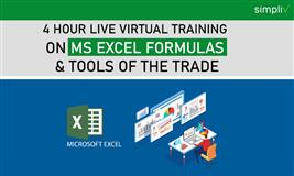MS Excel Formulas and Tools of the Trade 4 Hour Live Virtual Training