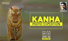 Kanha Wildlife Photography Tour