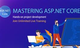 Asp.net core training online