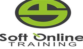 Free Oracle Fusion PPM Online Training/Webinar