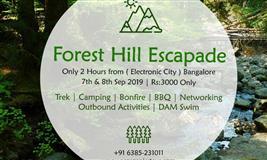 FOREST HILLS ESCAPADE