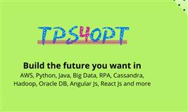 Tps4opt Online Training and Job Support