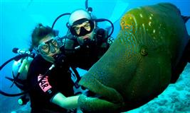 Scuba Diving In Goa, Baina beach