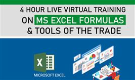4 Hour Live Virtual Training on MS Excel Formulas and Tools