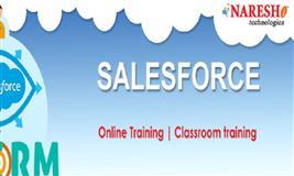 sales force online training ( Naresh I Technologies)