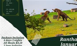 Ranthambore Wildlife Photography Tour 2021