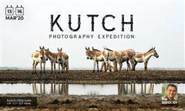 Little Rann of Kutch- Desert Paradise