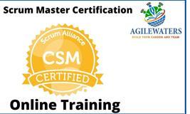 Certified Scrum Master (CSM) Online Training