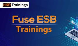 The Fuse ESB Training| Free Online Demo