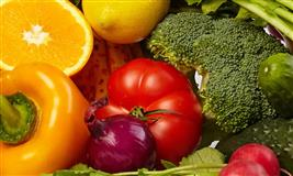 European nutrition and dietetics conference