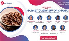 Market Overview of Chana