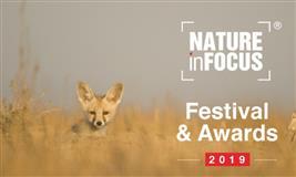 Nature in Focus 2019