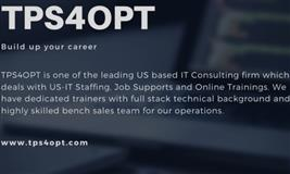 US IT Consulting l TPS4OPT