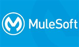 Mulesoft Certification Training Course