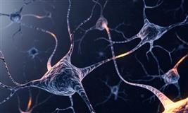 Neurology conference