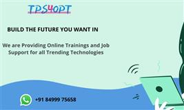 Job support and online training | Tps4opt