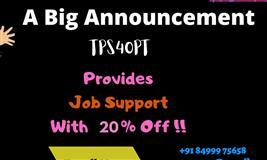 TPS4OPT Job Support