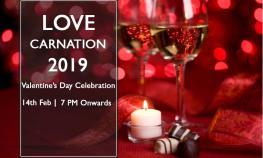 love-carnation