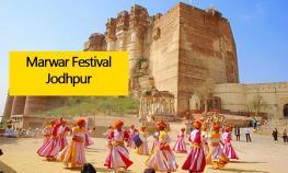 marwar-festival