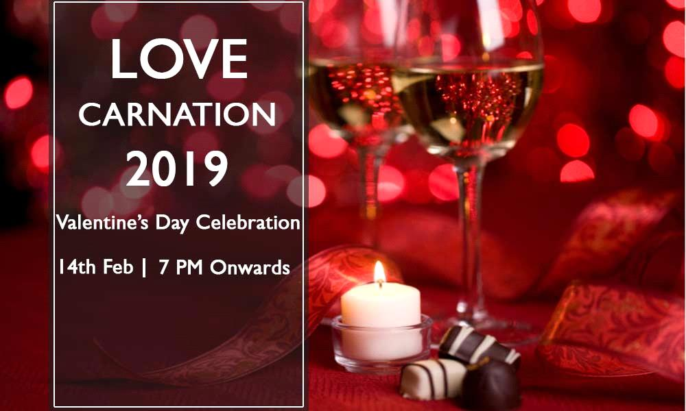 Love Carnation 2019